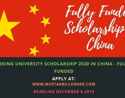 Peking University Scholarship 2020