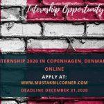 UNDP Internship 2020