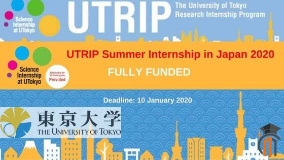 Chemistry Summer Internships 2020.Utrip Summer Internship In Japan 2020 Paid Internship