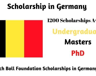 Heinrich Boll Foundation Scholarships