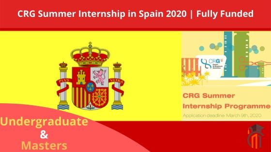 Summer Internship in Spain 2020