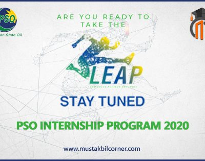PSO Internship Program 2020
