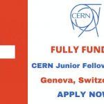 CERN Junior Fellowship 2020