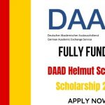 DAAD Helmut Schmidt Scholarship 2020