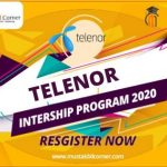 Telenor Internship Program
