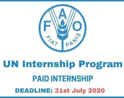 UN Internship Program 2021