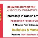 Royal Danish Embassy Internship 2020