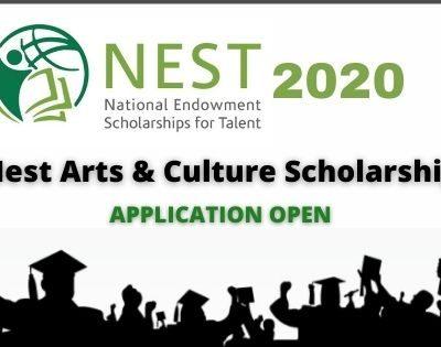 NEST Scholarship 2020